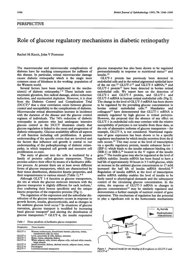 Role of glucose regulatory mechanisms in diabetic