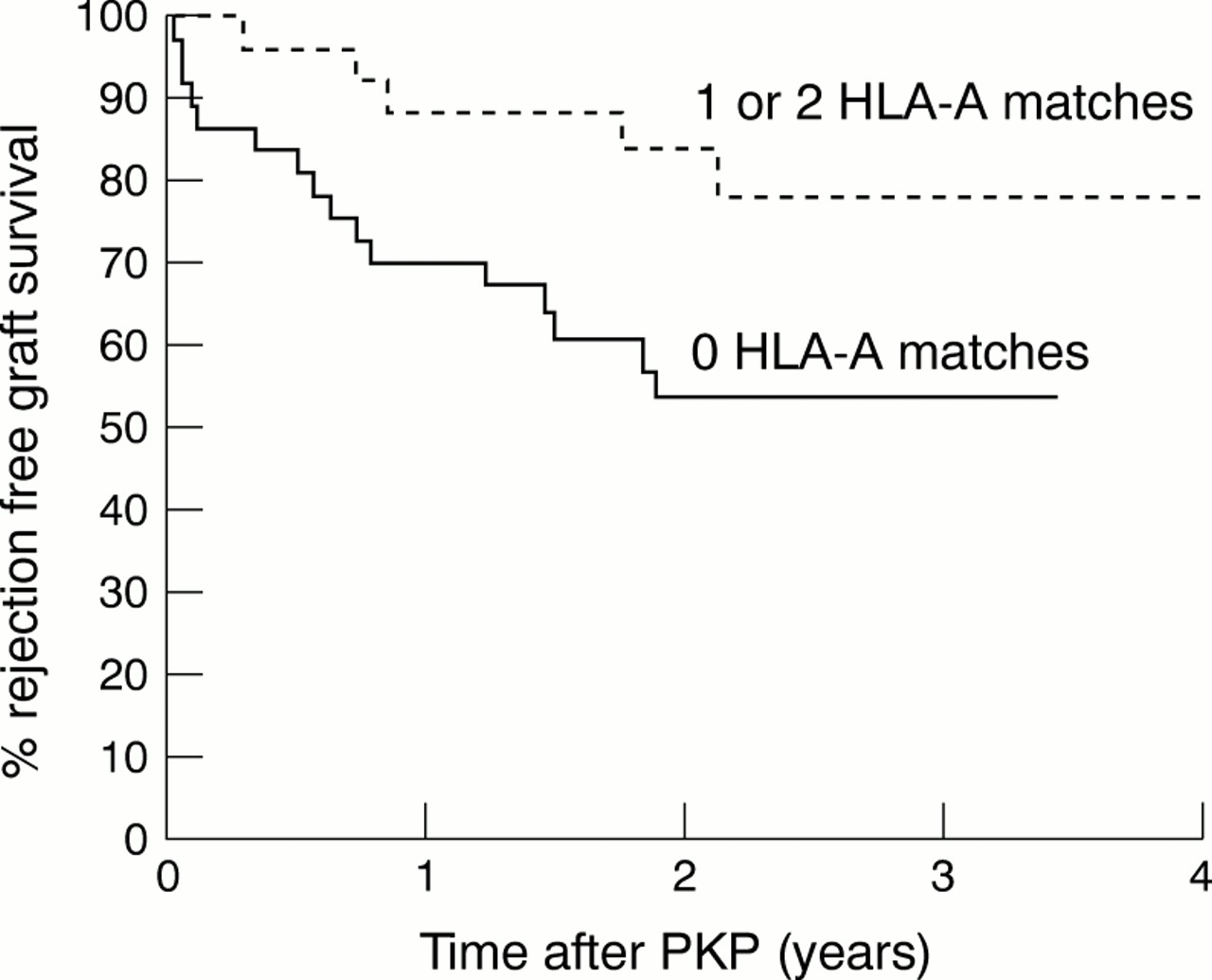 Influence of HLA-A, HLA-B, and HLA-DR matching on rejection